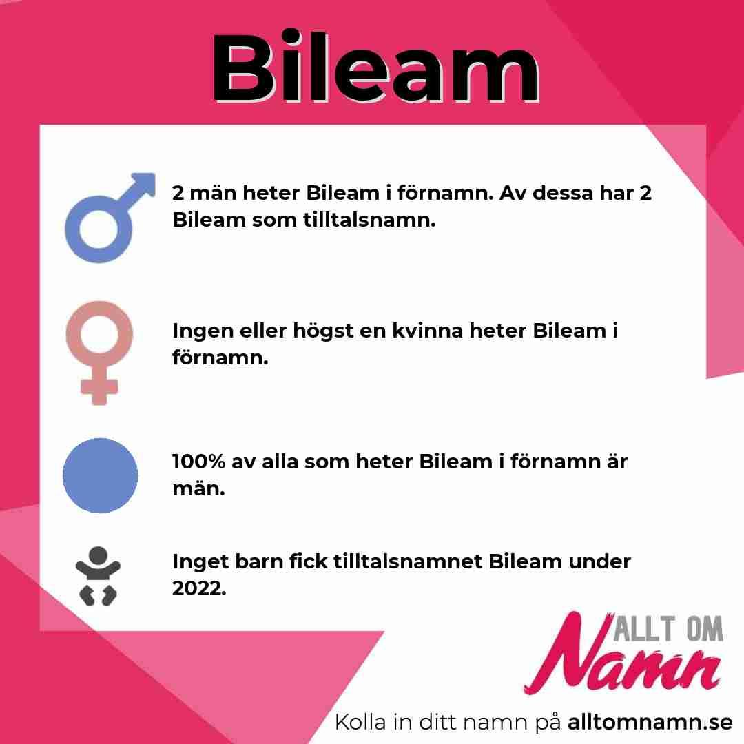 Bild som visar hur många som heter Bileam