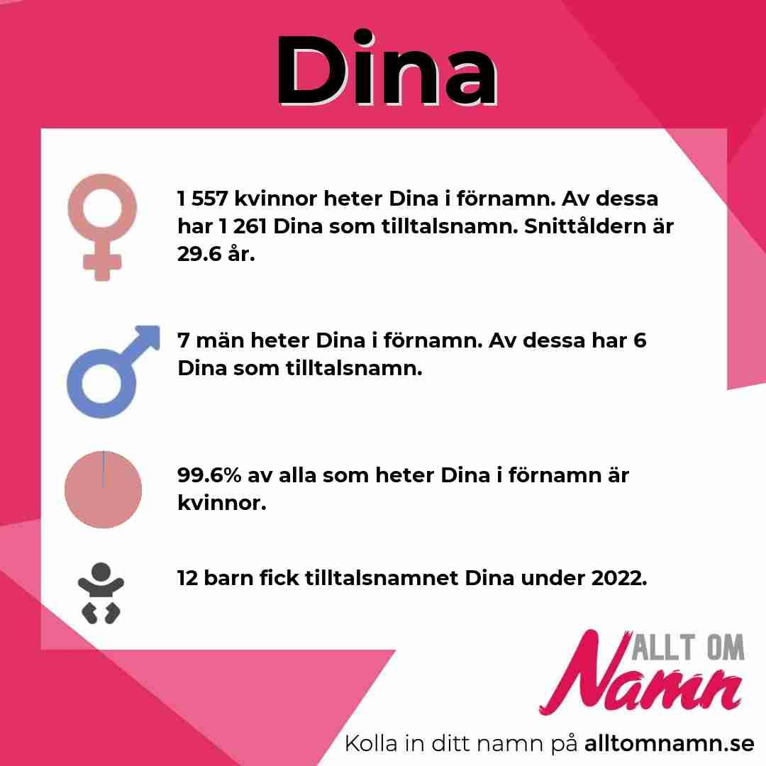 Bild som visar hur många som heter Dina