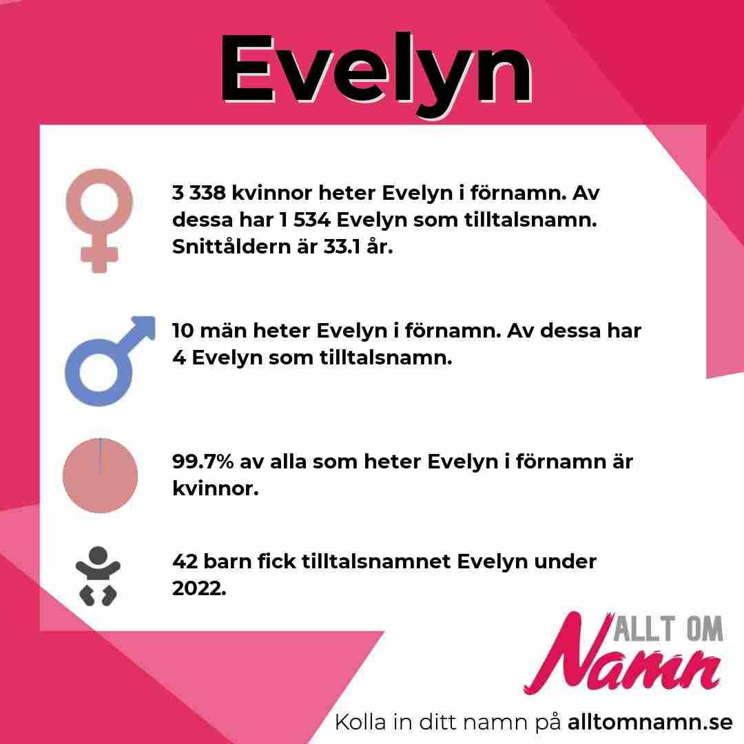 Bild som visar hur många som heter Evelyn